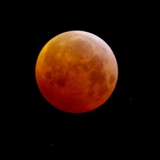 20190121-0527-blood-moon-K3158355.JPG